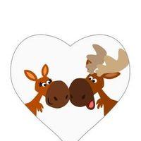 Moose Mart Inc logo