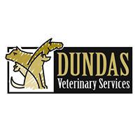 Dundas Veterinary Services logo