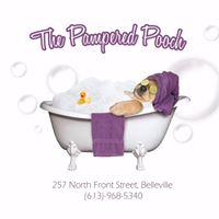 Pampered Pooch logo