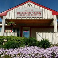 Blueberry Creek Veterinary Hospital logo