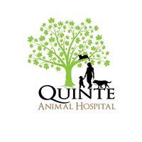 Quinte Animal Hospital logo