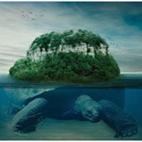 Turtle Island Park logo
