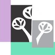 Collins Bay Dental logo
