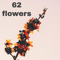 62 flowers logo