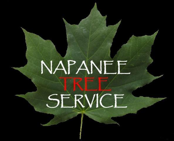 Greater Napanee Tree Service logo