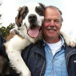 Winstead Dogs Training & Boarding logo