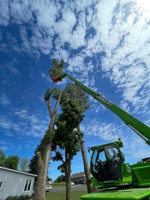 Photo uploaded by C & D Excavating & Tree Service Ltd