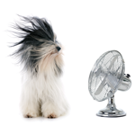 Photo uploaded by Home Aire Care Heating & Cooling