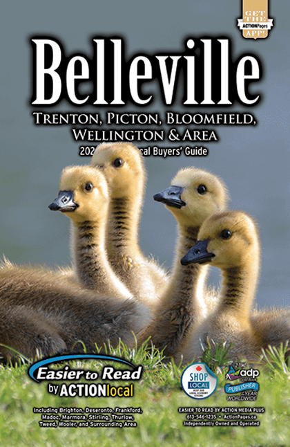 Bellevile Print Directory Cover